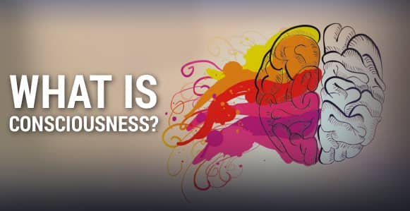 What Is Consciousness? 8 Mind-Blowing Videos That Help Explain The Relatively Unexplainable