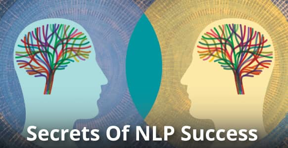 Secrets Of NLP Success: The Ins & Outs Of Submodalities, Hypnotic Language, Presuppositions & Power Words (And Why They'll Make You A Better Hypnotist)
