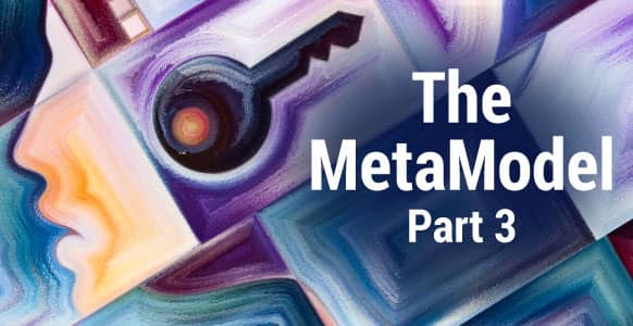 [VIDEO TRAINING] The MetaModel – Part 3: How To Find The Right Problem To Solve